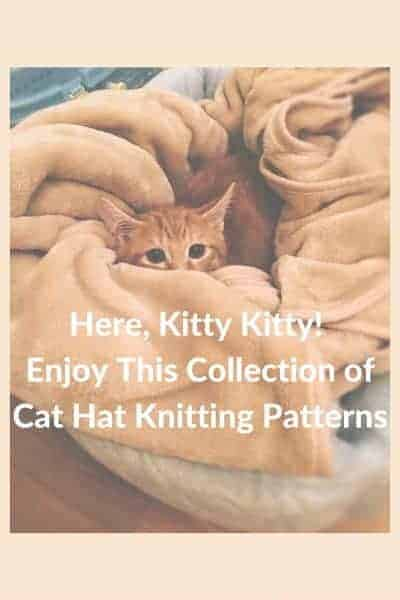 knitting patterns for cat hats