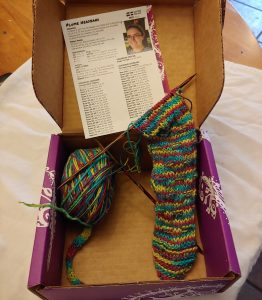 Darn Good Yarn box and yarn and project